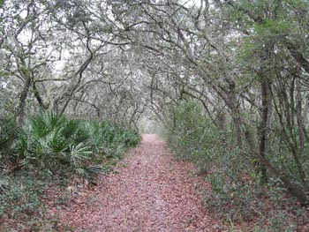 Croom Hiking Trail