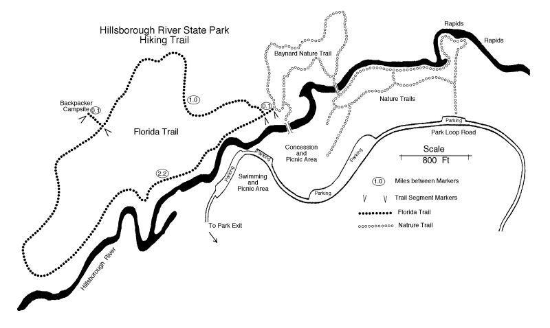 Suncoast Chapter Florida Trail Hillsborough River State Park