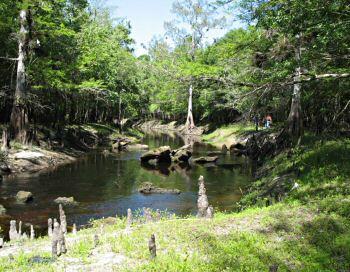 Suncoast Chapter Florida Trail Richloam Hiking Trail